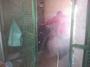 Nettoyage des box au jet d'eau