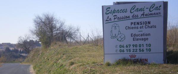 Pension Espaces Canicat à Maraussan, accès